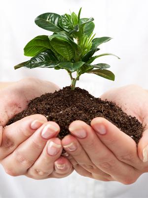 ¿Qué es protección del ambiente?