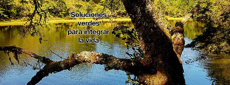 Soluciones verdes para integrar la vida